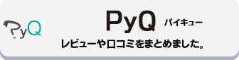 PyQのレビュー