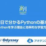 82分の無料動画、1日でわかるPythonの基本(講師は寺田学氏)