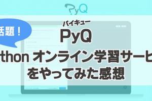 PyQ(パイキュー)のレビュー・感想