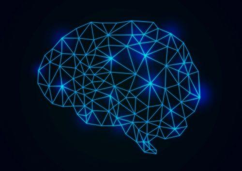 データサイエンス領域のプログラミングスクールが増えてきた