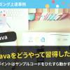 Javaプログラミングをどうやって習得した?ポイントはサンプルコードをひたすら動かす!